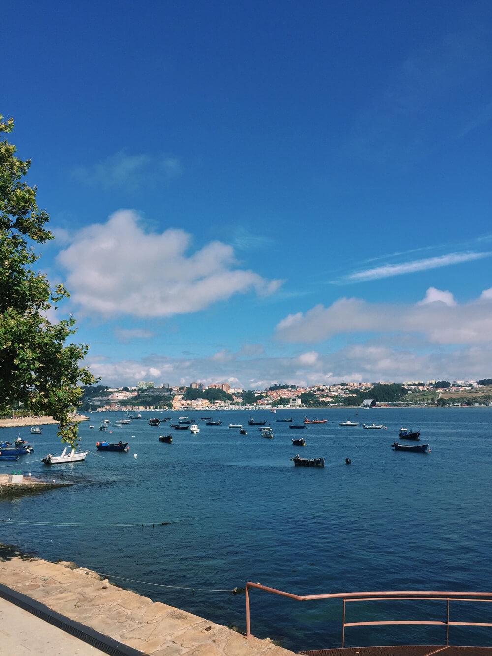 sandra stoicovici porto